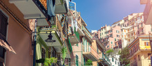 Colorful Homes Of Manarola, Ci...