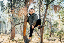 Happy Boy Climbing Pine Trees ...