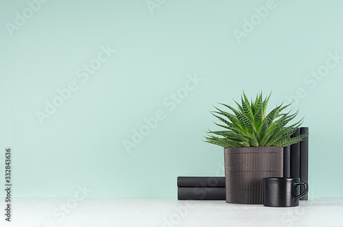Elegant fresh home decor with green houseplant of aloe in ribbed black pot, black books in style green mint menthe interior on white wood table, copy space Fototapete