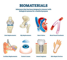 Biomaterials Vector Illustration. Labeled Organ Replacement Collection Set.