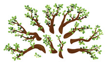 Set Of Ten Oak Branches With Green Leaves Isolated Illustration, Group Of Different Branches For Tree Create