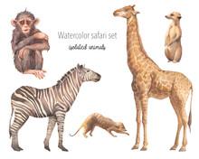 Watercolor Safari Animals Illu...