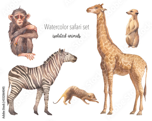 Watercolor safari animals illustration Wallpaper Mural