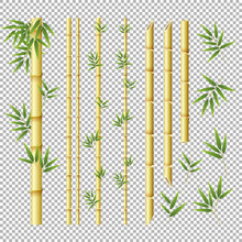 Set Of Bamboo Stickes And Leaves On Transparent Background