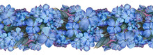 Hand Drawn Watercolor Painting Seamless Border From Many Blue Violet Flowers And Leaves On A White Background. Beautiful Nature Element For For Design, Greeting Card, Banner.