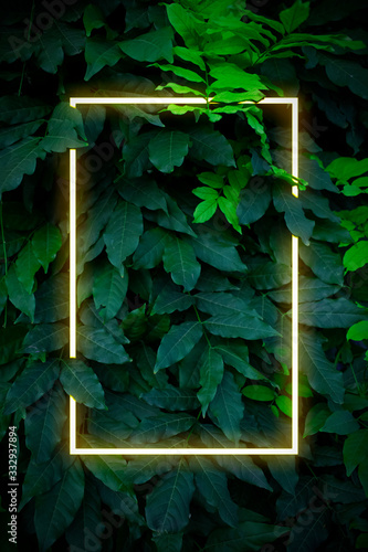 Fototapeta Сreative spring color layout. Neon light flat square frame on leaves background in green colors, fluorescent color palette copy space for banner, poster, card, sale advertisement, party invitation obraz