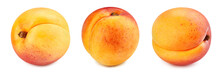 Collection Apricot. Apricot Wi...