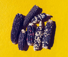 Indian Corn On A Yellow Background.