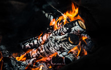 Wood Fire With Ash, сloseup
