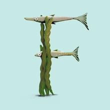 Fish In The Seaweed - F