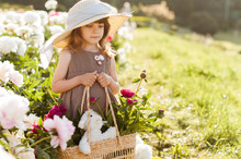 Charming Little Girl In A Straw Hat Walks Among The White Blossoming Peonies In The Garden..