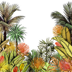 Naklejka Liście Colorful card with coconut palm trees and tropical lush foliage.