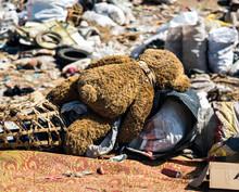 Dumped Teddy Bear On Junkyard