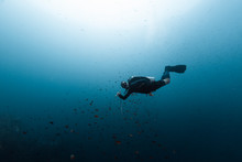 Scuba Diver In Blue Ocean