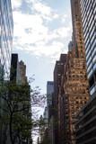 Fototapeta Nowy Jork - metropolia