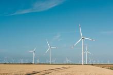Windpower Fields Forever