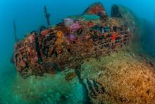 WWII Japanese Zero Plane Wreck