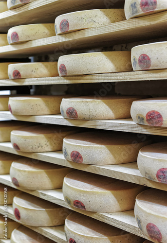 Fotografie, Tablou Rack of aging Cheese in ripening cellar Franche Comte creamery
