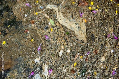 汚くてボウフラが湧いている池B Tapéta, Fotótapéta