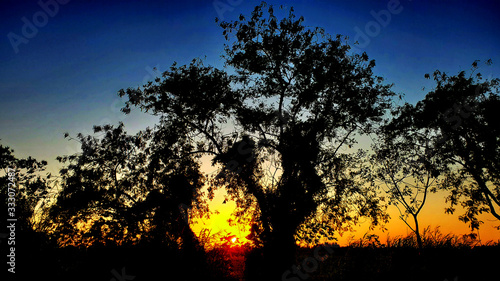 Photo Sunset, Aterdecer, Negative, Negativo, Paisaje, Nature, Miami, Kendall, Campo, A