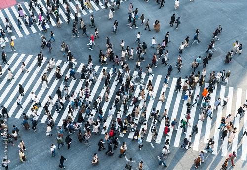 Fototapeta Shibuya crossing obraz
