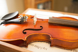 close up of violin strings and wood details