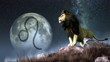 canvas print picture - Leo is the fifth sign of the Zodiac. People born between July 22nd and August 22nd have this astrological sign. Its symbol is the lion. 3D rendering