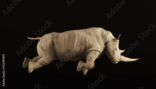 Fotografia Rhino attacks isolated