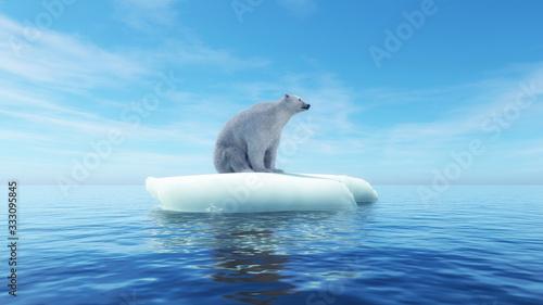 Fotografia Polar bear concept