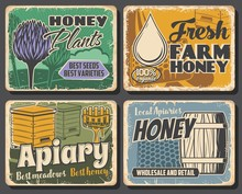 Honey Of Beekeeping Farm, Apia...