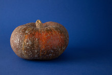 Ugly Food. An Ugly Organic Ora...