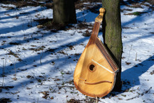 Still Life Of A Bandura Next To A Tree On A Snowy Ground In A Grove, An Ancient National Ukrainian Instrument, Archetypal, Spiritual