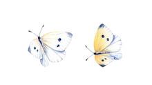 Watercolor Butterflies Set. Tw...
