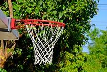 Outdoor Basketball Hoop With N...
