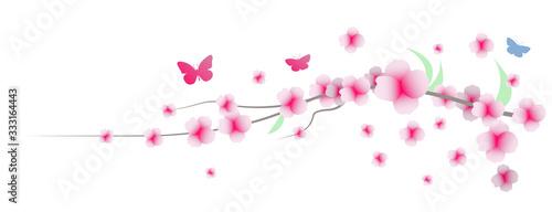 Vászonkép primavera, fiori, sakura, ciliegi,