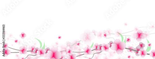 primavera, fiori, sakura, ciliegi, Tapéta, Fotótapéta
