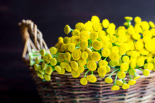 Basket With Blue Tansy Flowers. Dark Background. Selective Focus. Close Up, Copy Space