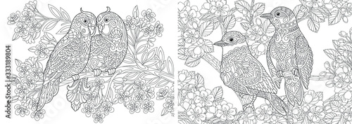 Fototapeta Coloring pages. Couple of lovely birds in floral garden.  obraz