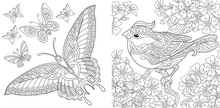 Coloring Pages. Vintage Butterfly Collection. Bird In Flourish Garden.
