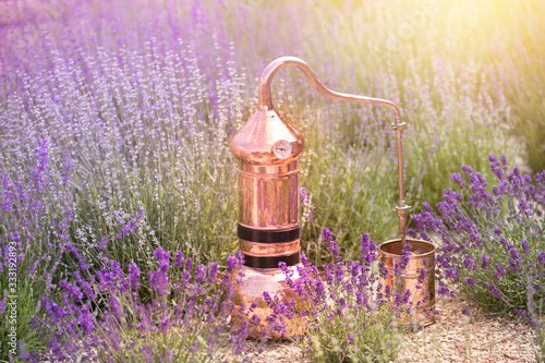 Distilling apparatus alembic on the ground with esential oil between of lavender field lines Canvas Print