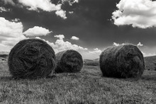 Panorama With Hay Bales In Bla...