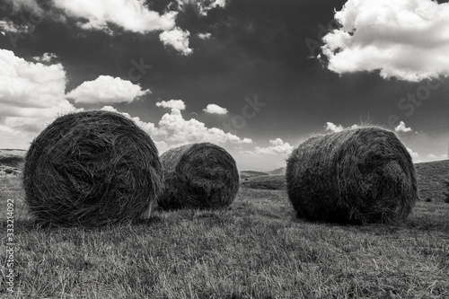 Fotografia panorama with hay bales in black and white