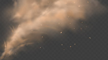 Dust Sand Cloud With Stones An...