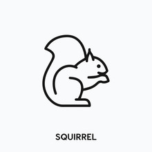 Squirrel Icon Vector. Squirrel Icon Vector Symbol Illustration. Modern Simple Vector Icon For Your Design. Squirrel Icon Vector