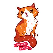 Orange And White Fluffy Cat Ma...