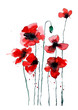 Stylized poppy flowers illustration. Red flowers, watercolor illustration.