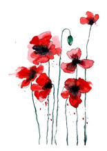 Stylized Poppy Flowers Illustr...