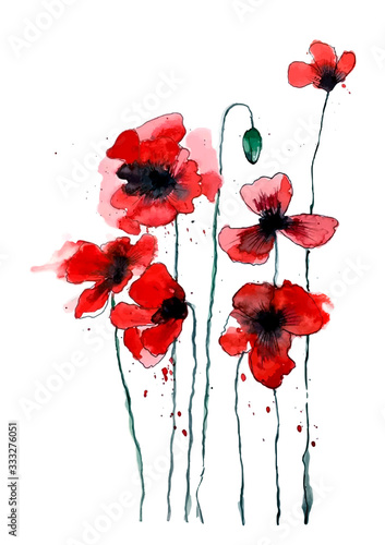 Stylized poppy flowers illustration. Red flowers, watercolor illustration. - 333276051