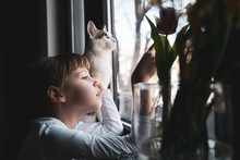 Girl Waiting By The Window Near Her Cat