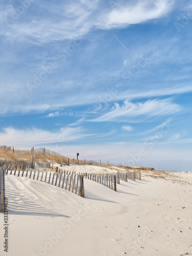 Fotografija New Jersey Island Beach state park attempts to protect the massive and endangere